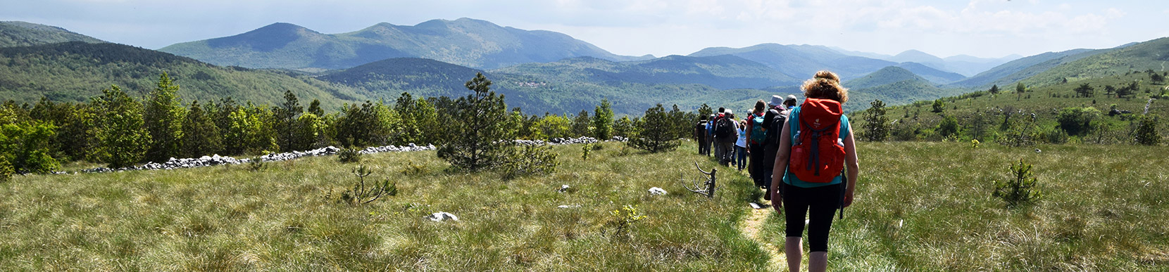Gruppo Tutela Ambiente Montano - TAM