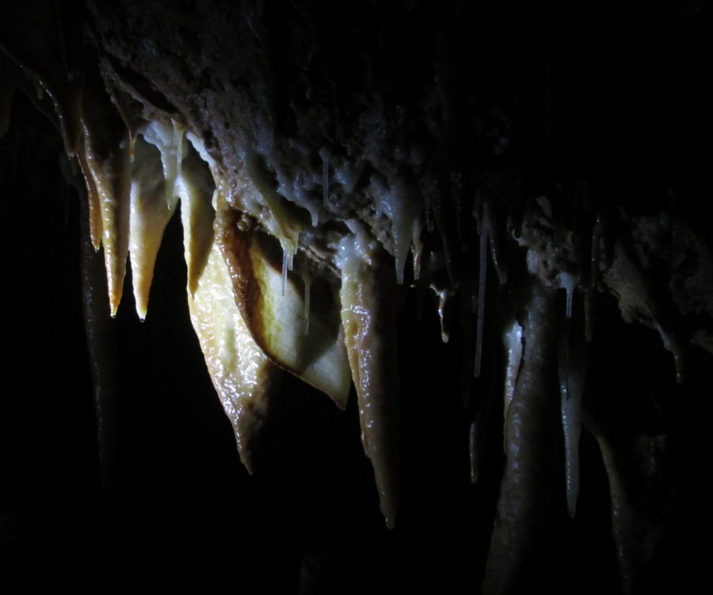 cgeb 07 corso speleo grotta 5115