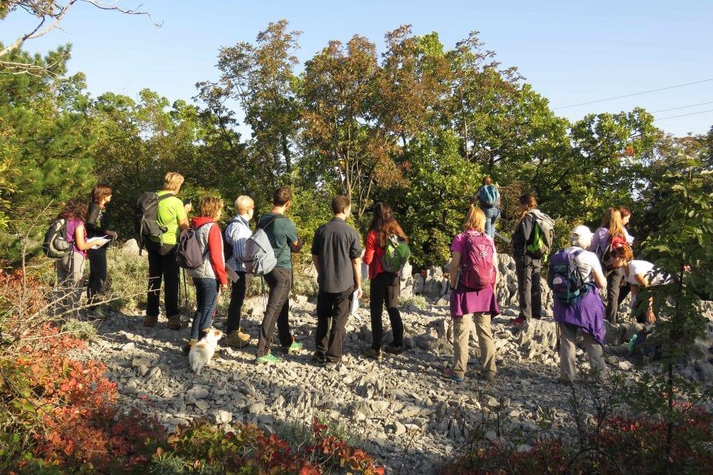 19-10-26 TAM 29 Corso alberi_11