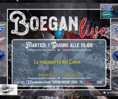 cgeb boegan live canin 1 giu